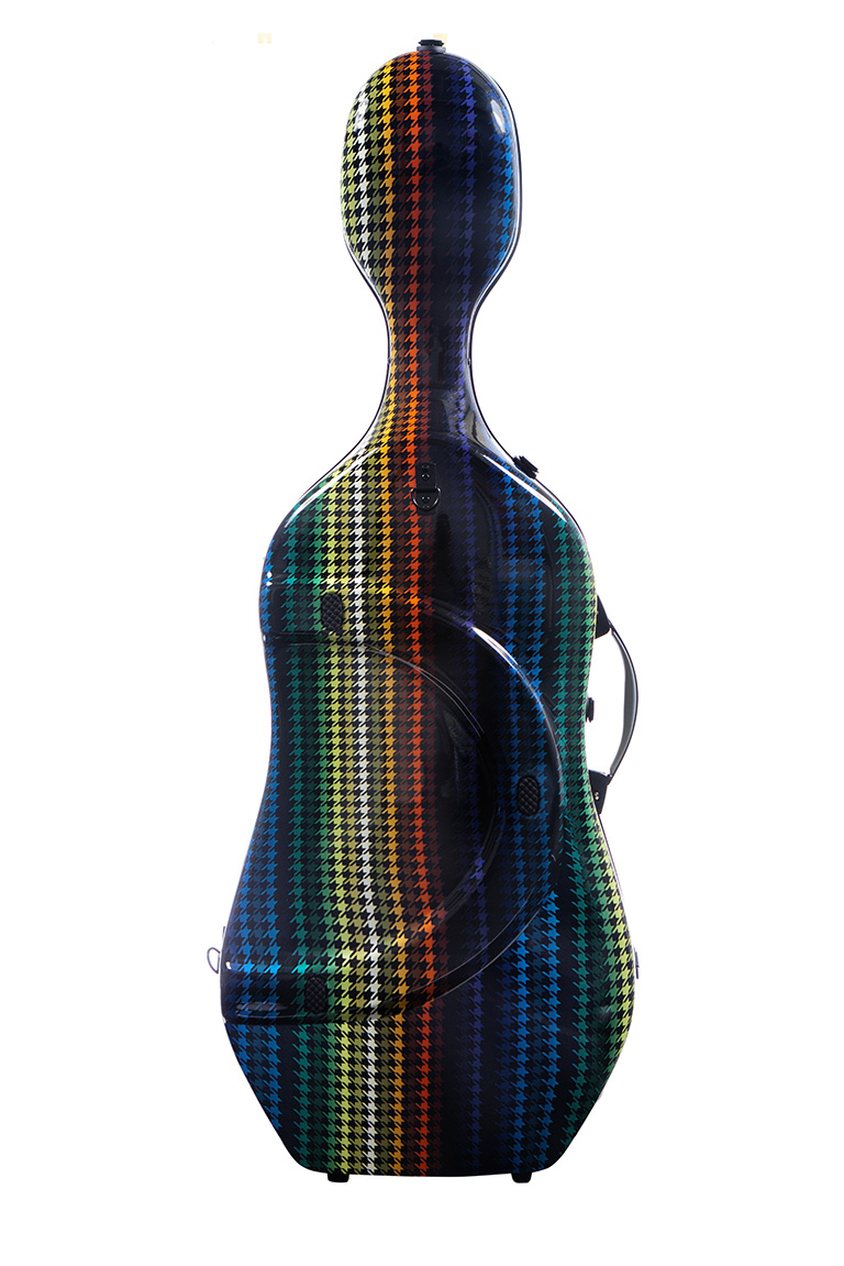 BAM PARIS cello case BACK