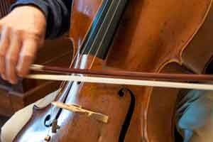 Parkland Cello 12 Month Introductory Rental including Lesson Book